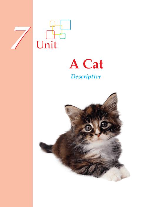 Grade 1 Descriptive Writing A Cat