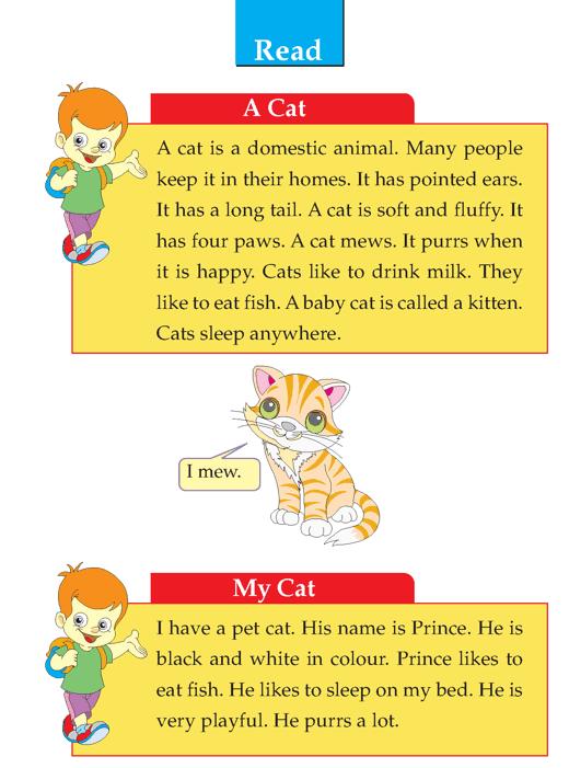 Writing skill - grade 1 - descriptive - a cat  (2)