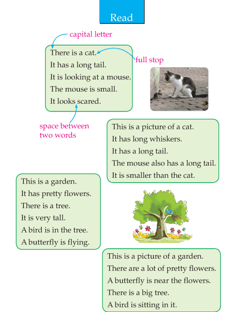 Writing skill - grade 2 - picture composition  (2)