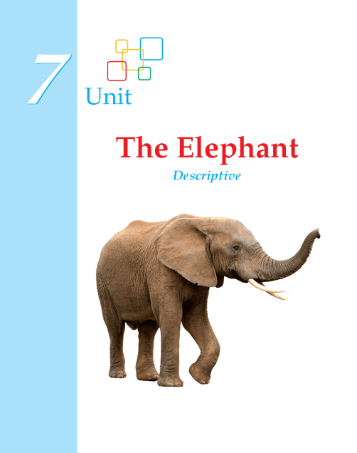 Writing skill - grade 2 - the elephant (1)