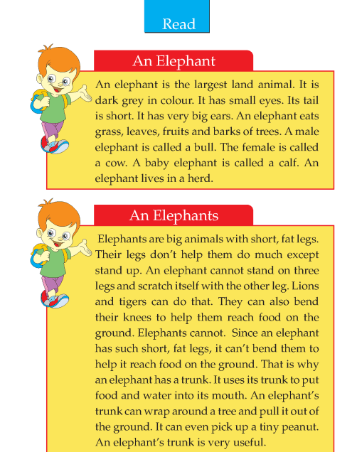 Writing skill - grade 2 - the elephant (2)