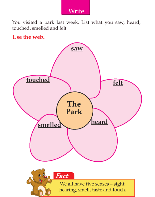 Writing skill - grade 2 - the park (4)
