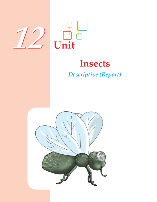 Grade 4 Descriptive Report Insects