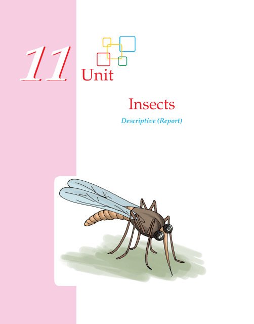 Writing skill - grade 5 - insects  (1)