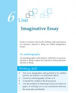 Grade 7 Imaginative Essay