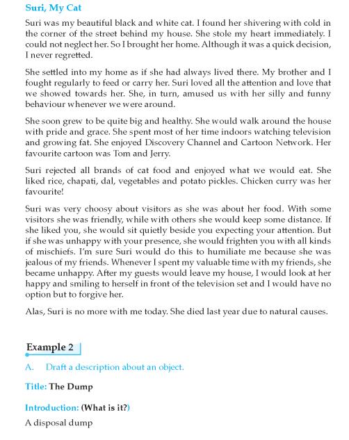 Writing skill -  grade 9_Page_011